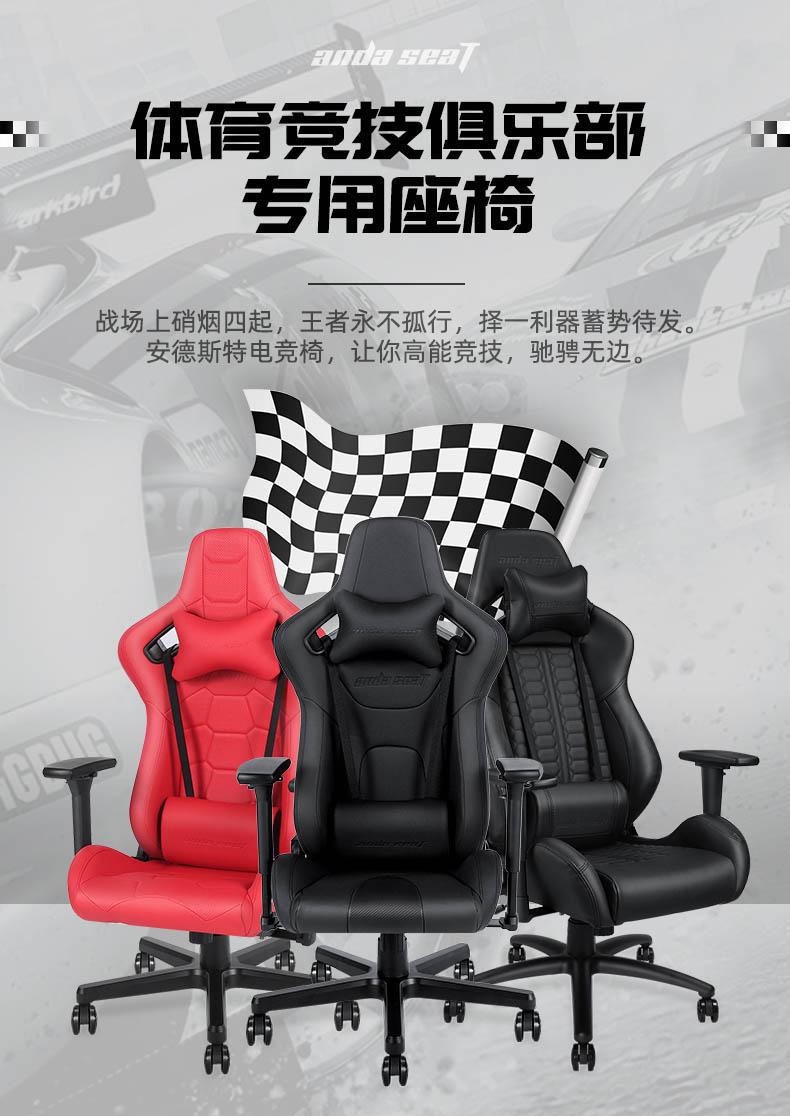 专业电竞椅-疾风王座产品介绍图2
