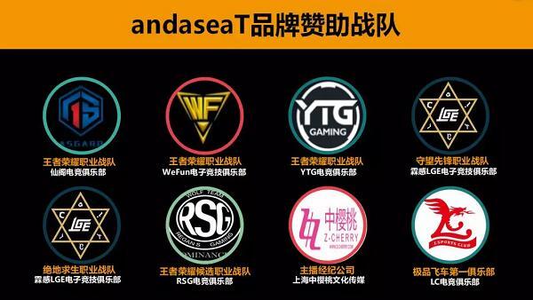 安德斯特品牌赞助战队