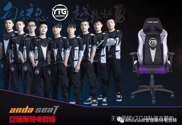 王者荣耀YTG战队官方赞助